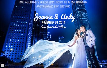 Joanna andy