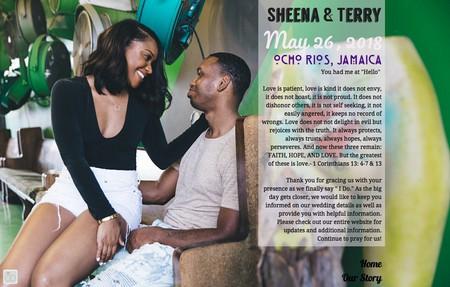 Sheena terry